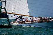 Marilee sailing in the Opera House Cup.