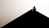 The Boy at the top