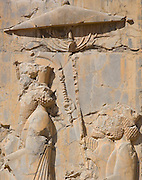 Vandalised Bas reliefs in Persepolis, the ceremonial capital of the Persian Empire (550-330 BC) during the Achaemenid dynasty. Persepolis, Iran