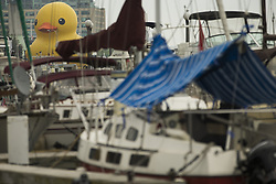 June 30, 2017 - Toronto, ON, Canada - MORE IN EMMA ------- MORE IN EMMA ----------------..TORONTO, ON - JUNE 30: The World's Largest Rubber Duck has made its official Canadian debut today in Toronto Harbour. The 6 storey tall duck is 78 feet wide and 89 feet long and weighs in at 30,000 lbs. Its here for Canada150 Celebrations. Toronto Star/Rick Madonik Rick Madonik/Toronto Star (Credit Image: © Rick Madonik/The Toronto Star via ZUMA Wire)