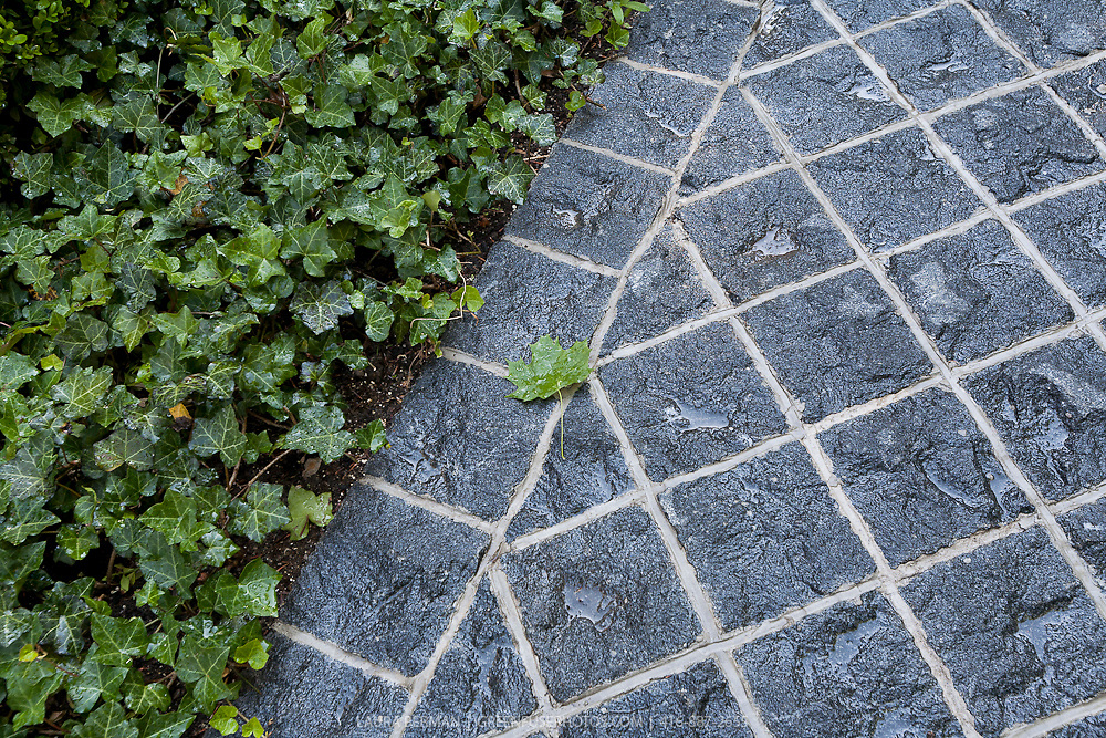 Black granite pavers  edging a planting bed flush with a pathway.