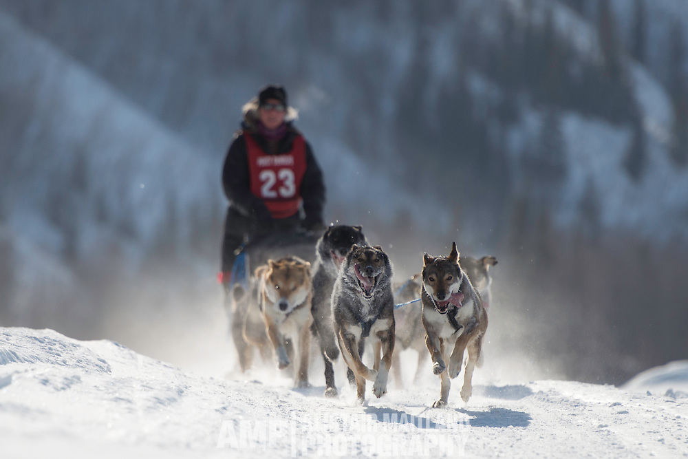 Percy Memorial Sled Dog Race