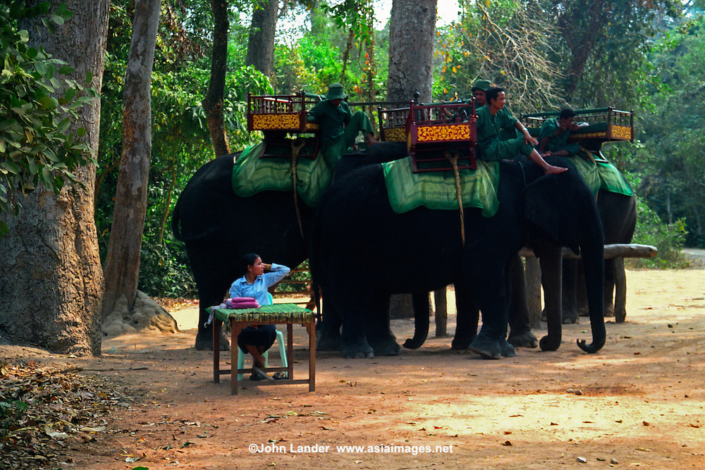 Elephant Rentals at Angkor Wat, with a Mahout to go