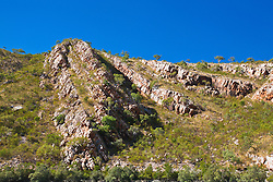 Dramatic sandstone hillsides in Cyclone Creek are evidence of major geological uplifting.