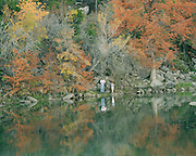 """Strollers enjoying fall colors along Lake Austin in Austin, Texas. NOTE: Click """"Shopping Cart"""" icon for available sizes and prices. If a """"Purchase this image"""" screen opens, click arrow on it. Doing so does not constitute making a purchase. To purchase, additional steps are required."""