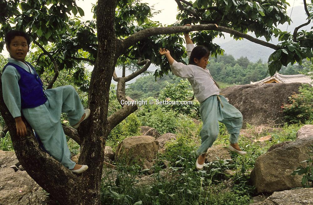 Traditional classroom.  Lessons are broken by short recreations.       La salle de classe. Dans ce village , les enfants n'etudient que les textes chinois. Les hommes de Chonhakdong ne se coupent jamais les cheveux. ce jeune ecolier n'est pas une fille mais un garçon. Les cours sont entrecoupes par de courtes recreations.      //////R28/13    L2630  /  R00028  /  P0003007//////Chonhakdong village confucianiste traditionel. //////Chonhakdong traditional confucianist village .