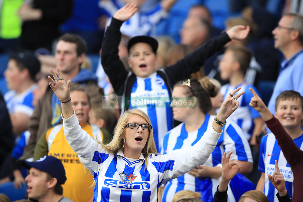 A Brighton & Hove Albion supporter celebrates int he stands during the Premier League match at the AMEX Stadium, Brighton.