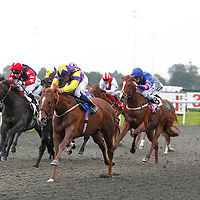 Kempton 6th October