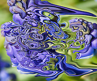 Blue fantasy in fluid floating shape on blurred green background