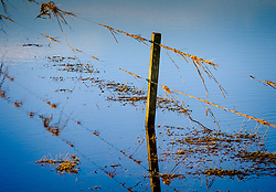 Flooded fields in South Lanarkshire caused by the River Medwin (a tributary of the River Clyde) flooding its banks near Carnwath, Scotland.<br /> <br /> <br /> (c) Andrew Wilson   Edinburgh Elite media