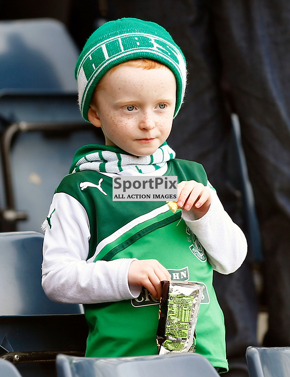 Hibernian v Falkirk Scottish Cup Semi Final....a young Hibs fan...(c) STEPHEN LAWSON | StockPix.eu