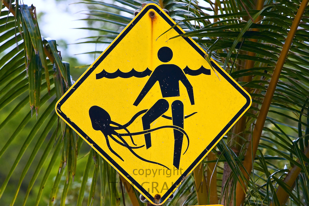 Marine stingers warning sign on Myall Beach by Cape Tribulation, Queensland, Australia