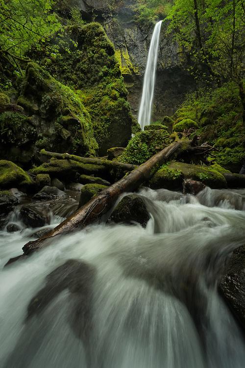 Elowah Falls, Multnomah County, Columbia River Gorge, Oregon
