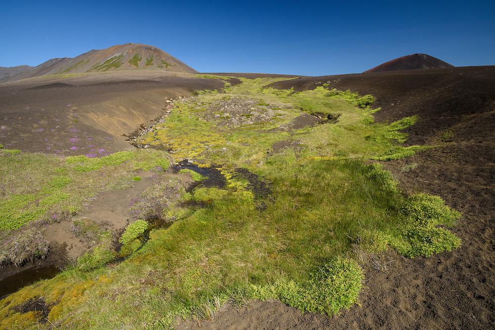 Berserkjahraun, Iceland