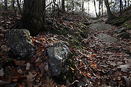Mountainville, New York - Oak leaves on the ground on the Jessup Trail on Schunnemunk Mountain on Nov. 28, 2010.