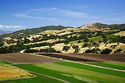 Santa Ynez Wine Country Near Solvang