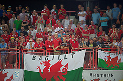 NOVI SAD, SERBIA - Tuesday, September 11, 2012: Wales supporters looks dejected after watching their side lose 6-1 to Serbia during the 2014 FIFA World Cup Brazil Qualifying Group A match at the Karadorde Stadium. (Pic by David Rawcliffe/Propaganda)