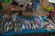 Fish market trip