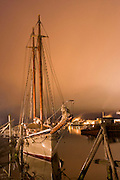 Schooner American Eagle in port at night.
