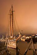Schooner American Eagle in port at night.