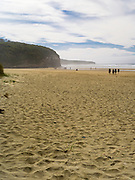 On the way to Cathedral Caves, Waipati Beach, Catlins, near Papatowai, Clutha, New Zealand.  Cathedral Caves is only accessible during low tide and in the summer months.
