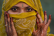 Hindu Woman in village near Bharatpur. Rajasthan. INDIA<br /> Only the married women cover their heads and may look out through an eye-slit. The woman has henna painted hands for Diwali festival. This is the most important Hindu festival, also known as the 'festival of lights'. It lasts 4- 5 days and is in honor of Lakshmi, the goddess of prosperity. Each day brings a different ritural, including lamp lighting, bathing, feasting, decorating the house, firecrackers and gift giving. It is held in October/November.