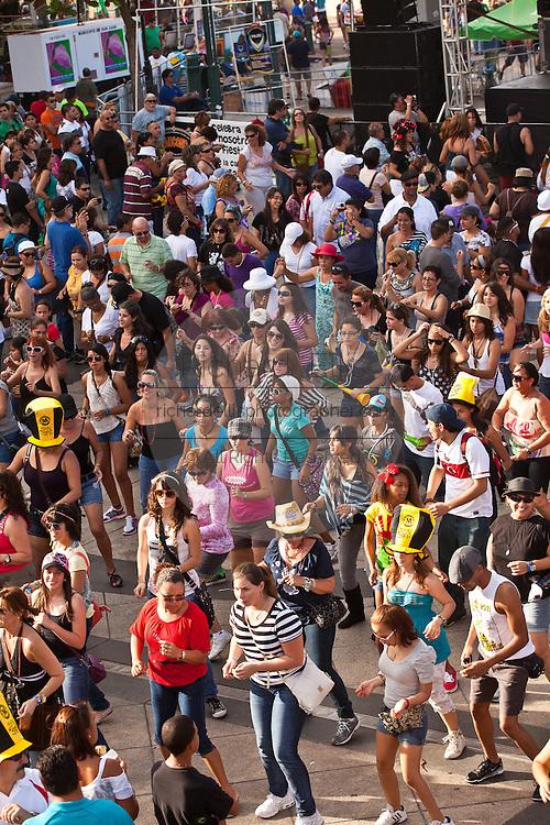 Revelers during the Festival of San Sebastian in San Juan, Puerto Rico.