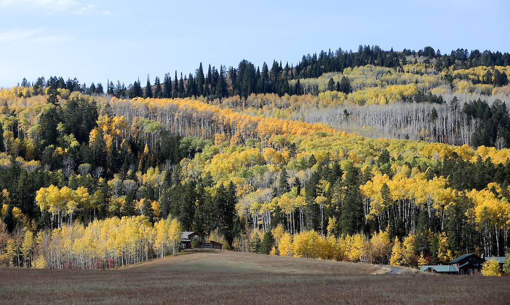 Fall colors in the Tetons outside of Victor, ID.