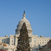 The US Capitol Building with its Christmas tree on the Mall in Washington DC.
