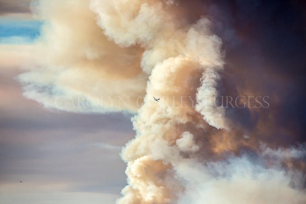 Borate bomber cirlcing massive wildfire smoke cloud in Northern California.