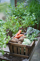 Wooden crate of fresh vegetables