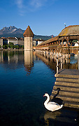 Wasserturm, Kapellbrucke, River Reuss, Pilatus mountain, Luzern or Lucerne, Switzerland