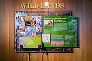 Wildlife displays at the Jackson Hole Visitor Center, Jackson Hole, Wyoming USA