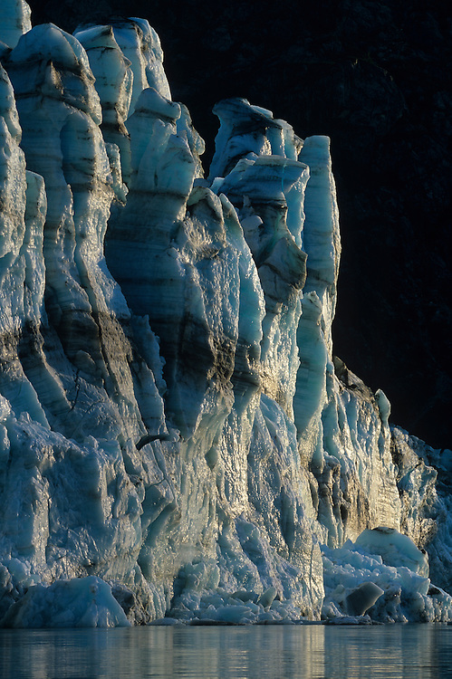USA, Alaska, Glacier Bay National Park, Setting summer sun lights face of Lamplugh Glacier on summer evening