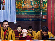 16 MARCH 2017 - KATHMANDU, NEPAL: Tibetan Buddhist monks at morning prayers before sunrise in a monastery next to Boudhanath Stupa in Kathmandu. Boudhanath Stupa is the holiest site in Nepali Buddhism. It is also the center of the Tibetan exile community in Kathmandu. The Stupa was badly damaged in the 2015 earthquake but was one of the first buildings renovated.      PHOTO BY JACK KURTZ