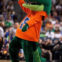 Mar 17, 2011; Tampa, FL, USA; The Florida Gators mascot during second half of the second round of the 2011 NCAA men's basketball tournament against the UC Santa Barbara Gauchos at the St. Pete Times Forum. Florida defeated UCSB 79-51.  Mandatory Credit: Derick E. Hingle