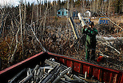 URANIUM CITY, SK - 14/10/08 - Andrew Schultz gathering wood from fallen trees in the abandoned section of town.