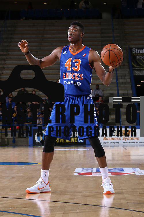 Westchester Knicks Forward THANASIS ANTETOKOUNMPO attempts to pass the ball in the first half of a NBA D-league regular season basketball game between the Delaware 87ers and the Westchester Knicks Saturday Dec, 26, 2015 at The Bob Carpenter Sports Convocation Center in Newark, DEL