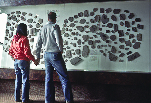 Visitors looking at a fossil display, Florissant Fossil Beds National Monument, Colorado.