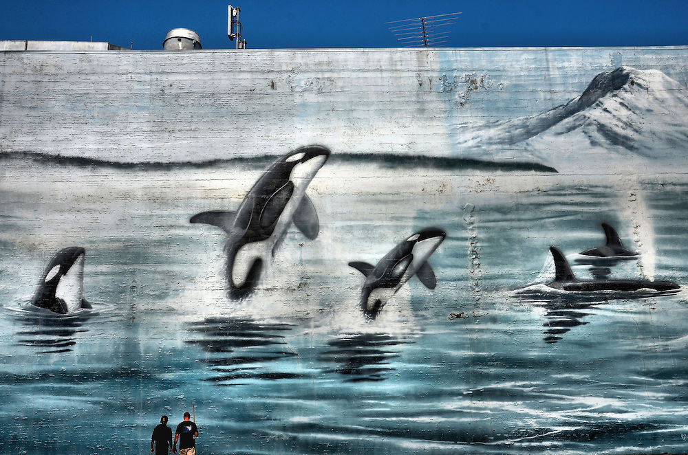 Washington Orcas Wyland Whaling Wall on Bowes Building in Tacoma, Washington<br />