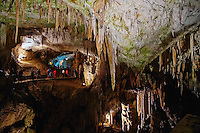 Slovenie, region de Notranjska, les grottes de Postojna // Slovenia, Postojna cave