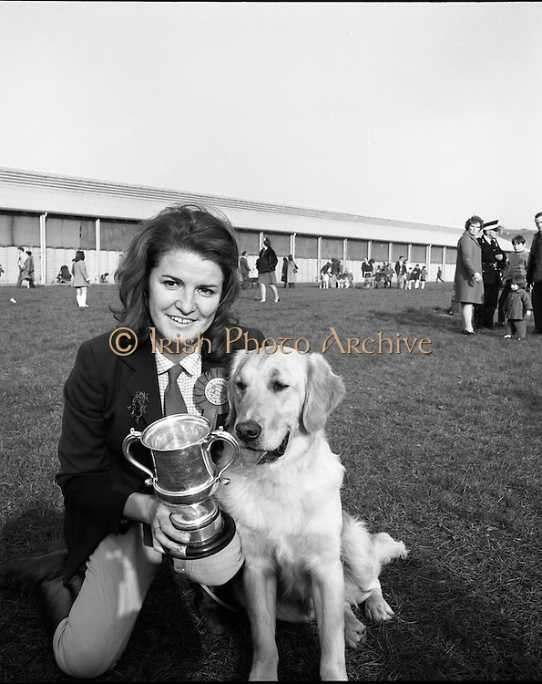RDS Dog Show.17.03.1972..03.17.1972..17th March 1972..The annual Irish Kennel Club Dog Show took place today at the RDS (Royal Dublin Showgrounds).It coincided with the Kennel Clubs Golden Jubilee...Pictured with her Golden Retriever,Glenfin Captain,is Mrs Jean Duggan of Castleknock,Co Dublin. Glenfin Captain was judged Best of Breed Winner at the show. This was his first entry in competition.