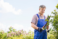 Gardener cutting branches at plant nursery