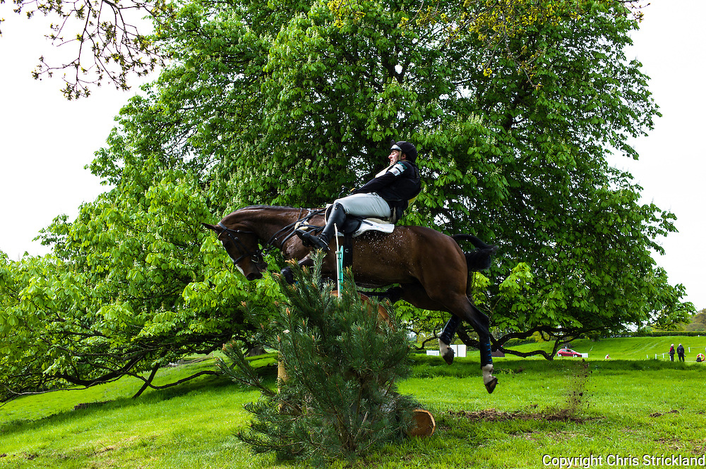 Floors Castle, Kelso, Roxburghshire, UK. 15th May 2015. Neil Wryan with Kilminchy Ronaldo of Ireland jumping a cross country fence at Floors Castle International Horse Trials.