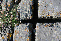 Rocks on Inis Mor county Galway