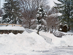 27 January 2011 Snow Storm After Affects: Looking toward the house.