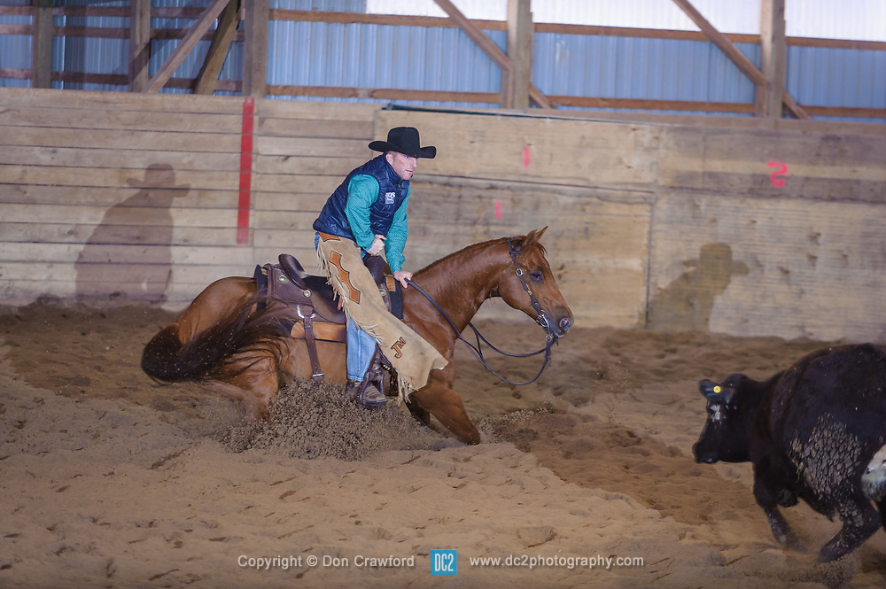 April 30 2017 - Minshall Farm Cutting 2, held at Minshall Farms, Hillsburgh Ontario. The event was put on by the Ontario Cutting Horse Association. Riding in the Non-Pro Class is John Martin on Ray Too Smart owned by the rider.