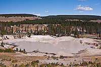 Mud Geyser at Mud Volcano Flats.  Yellowstone National Park, Wyoming, USA.