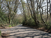 Empty lane, Bexhill. 10 April 2020