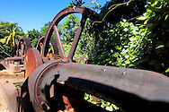 Abandoned sugar mill in Batabano, Mayabeque, Cuba.